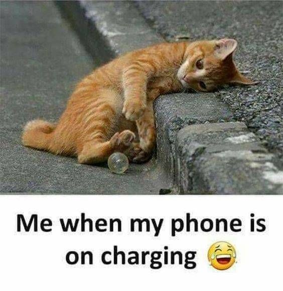 Me When My Phone Is On Charging Really Funny Memes Funny Qoutes Crazy Funny Memes