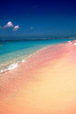 pink beach @ grand cayman - Can't wait to go here..less than one week left!!!