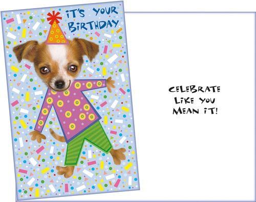 Birthday Humor Greeting Cards Funny Birthday Greeting Cards Wholesale Greeting Funny Birthday Greeting Cards Birthday Greetings Funny Wholesale Greeting Cards