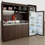 All in One Micro Kitchen Units Great for Tiny Homes?