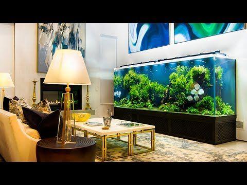 1 000 Gallon Planted Discus Aquarium Youtube Discus Aquarium Aquarium Fresh Water Fish Tank