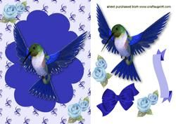 Pretty Blue Humming Bird with Flowers