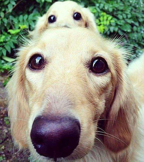 owwww amooo esos ojos...!!!