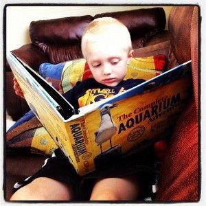 The Complete Aquarium Adventure by Master Books - win a copy