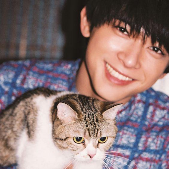 無邪気な笑顔とねこがかわいい吉沢亮の高画質画像