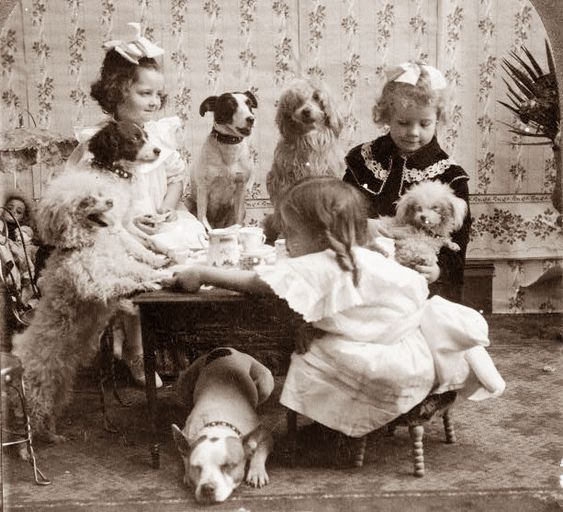 1906 Tea Party with dogs.