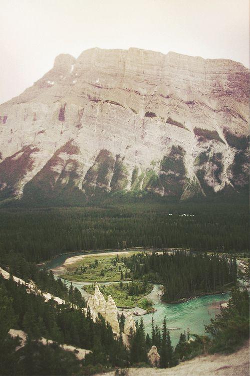 Arboles y montañas