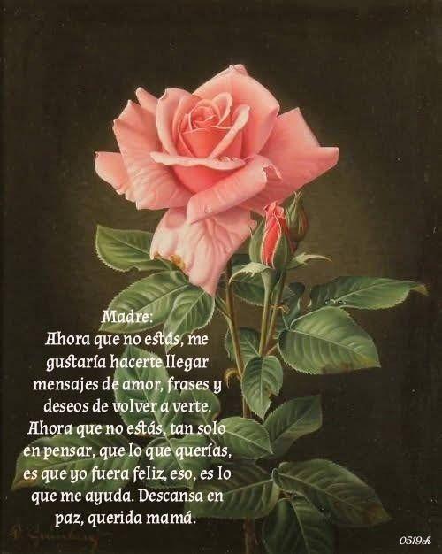 Pin De Rodolfo Arsenio En Día De La Madre Mensajes De Amor Dia De Las Madres Descansa En Paz