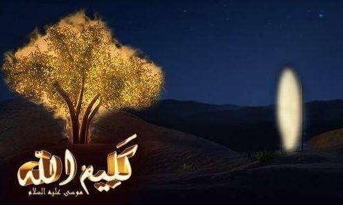 قصة كليم الله موسى عليه السلام Blog Posts