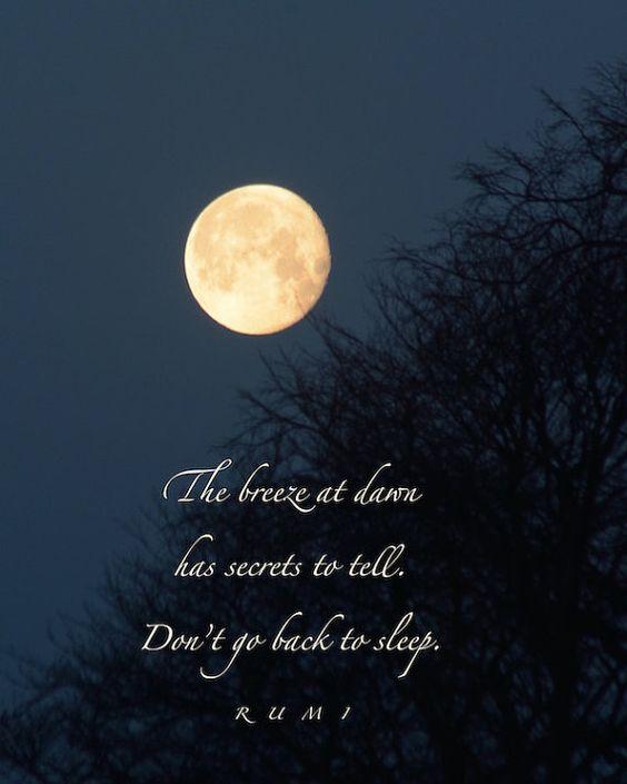 Brise im Morgengrauen Rumi Zitat, Golden Moon Photographie mit Anführungszeichen, Wortkunst, Geheimnisse, Mondkalender Liebe, inspirierende Worte