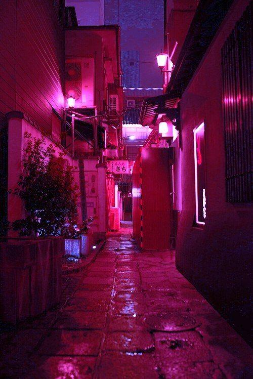 Neon Posts And Night On Pinterest