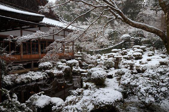 三千院・雪景色(聚碧園編) : 花景色-K.W.C. PhotoBlog