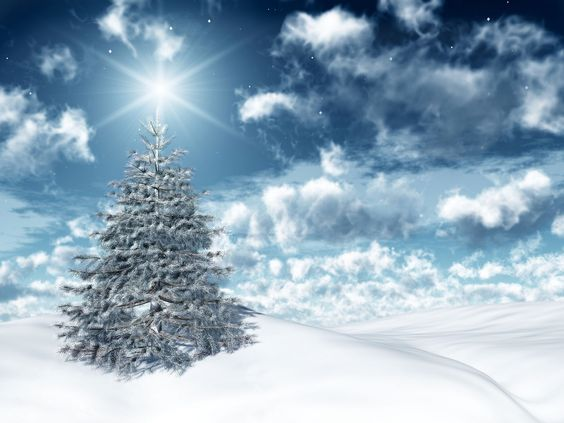 Pin By Amanda Langley On Wallpaper Backgrounds 3 Winter Christmas Scenes Christmas Wallpaper Free Beautiful Christmas Trees