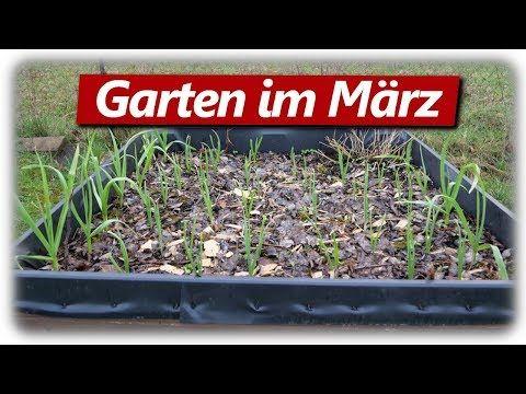 Hochbeete Bepflanzung Fullung Garten Im Marz 2020 Youtube In 2020 Bepflanzung Unkraut Im Garten Hochbeet