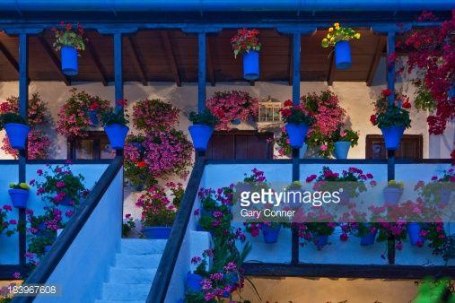Foto de stock : Patio decorated for Cordoba Patio Festival
