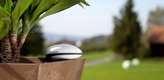 Koubachi plant sensor - luxurious gift ...