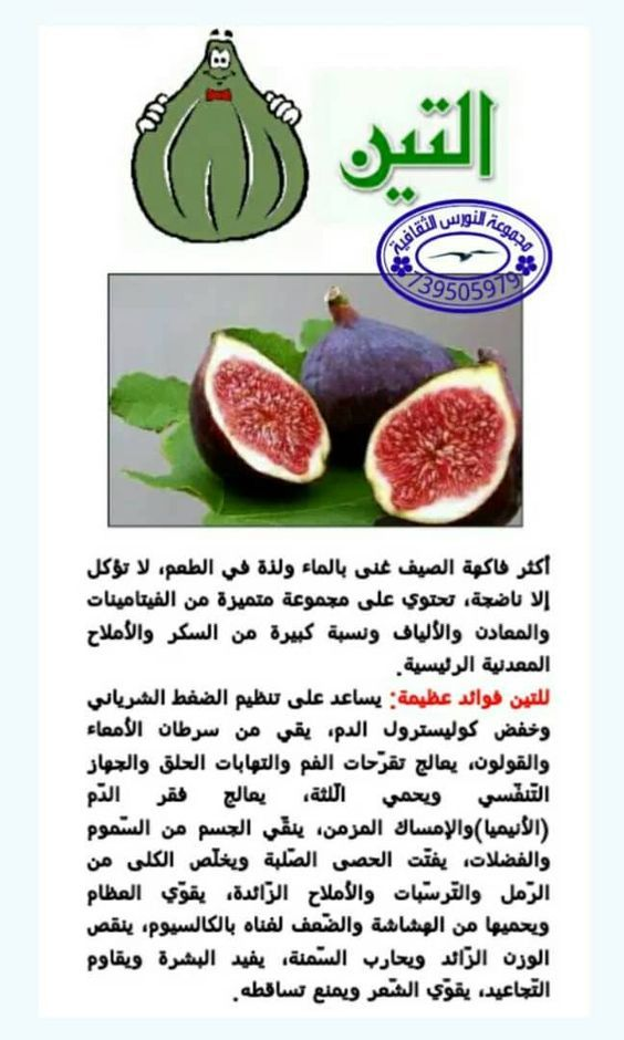 تعرف على فوائد فاكهة التين Health Facts Food Health Benefits Of Figs Health Fitness Nutrition