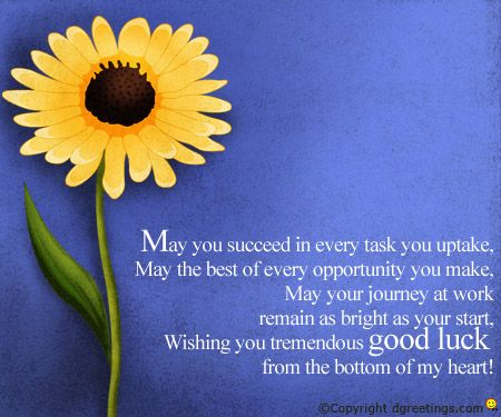 Dgreetings Send your best wishes for Exams by sending this card – Best Wishes for Exams Cards