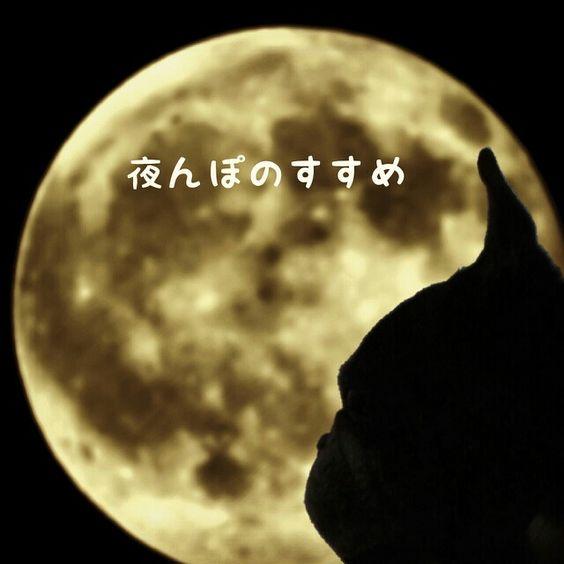 encourage development in full moon walking.