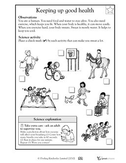 Worksheet 4th Grade Health Worksheets first grade science and health on pinterest keeping up good worksheets activities greatschools