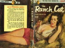 Cool vintage paperback book cover ...I love the title!