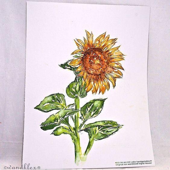 Ich allein werd die Welt nicht verbessern. Doch Sonnenblumen zu malen ist nicht der schlechteste Versuch dazu. (und auch nicht mein einziger.) Im Kleinen fängt es an. Ich kann nur einen Schritt nach dem anderen tun. Und versuche es. Wirklich. .  Material :Schmincke Künstlerfarben Horadam auf @hahnemuehle Britannia 300g matt  @wandklex Kunstatelier . (dieses Bild ist nicht mehr zu haben aber natürlich können Arbeiten nach Wunsch auch bei mir bestellt werden entweder im #etsyshop…