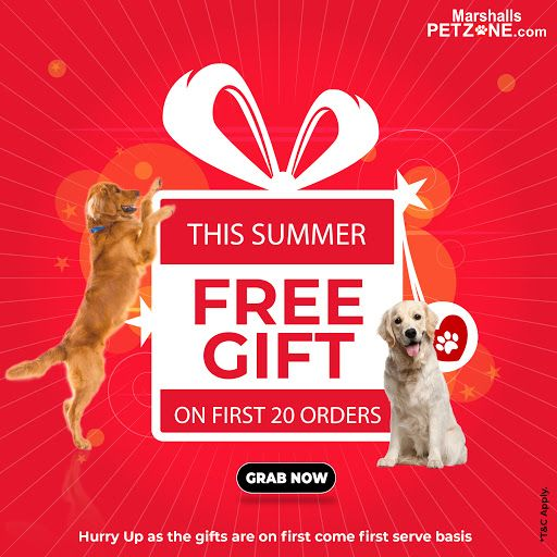 Time To Reward Your Love This Summer Get A Free Gift On First 20