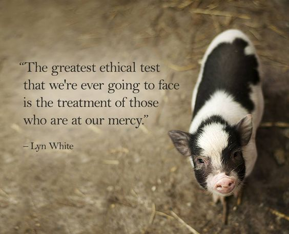 The greatest ethical test that we're ever going to face is the treatment of those who are at our mercy: