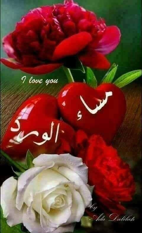 مساء السعادة والجمال مساء الوفاء لأهل الوفاء مساء المعزة والمودة لكل من لهم في القلب محبة يسعد مساؤؤؤؤؤكم S Love Images Beautiful Flowers Love Heart Images