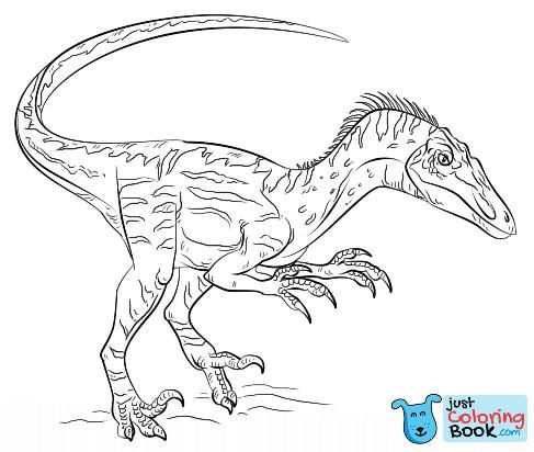 Velociraptor Coloring Page Free Printable Coloring Pages Pertaining To Velociraptor Dromaeosaurid Theropod Dinosaur Coloring Pages Printable