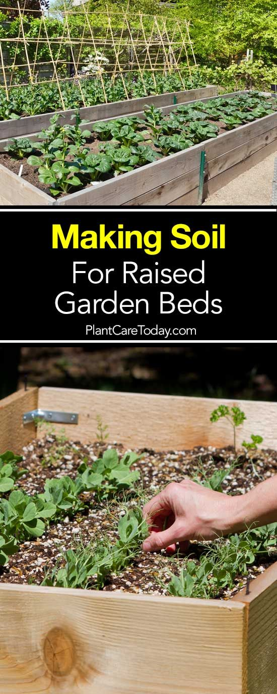 Soil For Raised Beds How To Make The Best Raised Bed Soil With