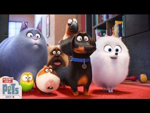 The Secret Life Of Pets Tv Spot 35 Hd Illumination Youtube Secret Life Of Pets Painting Kits Animal Tv