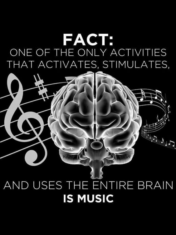 """Science """"FACT: One of the only activities that activates, stimulates & USES the ENTIRE brain is MUSIC."""" DdO:) MOST POPULAR RE-PINS - http://www.pinterest.com/DianaDeeOsborne/logic-math-music  - LOGIC MATH MUSIC Board. Treble clef & music staff - One of my former bass students is a math professor who's been part of scientific research  studies on brain's hippocampus - Medical imaging tests show literal brain growth when memorizing, playing music!  #DdO:) Google phrase: England taxi drivers brain:"""
