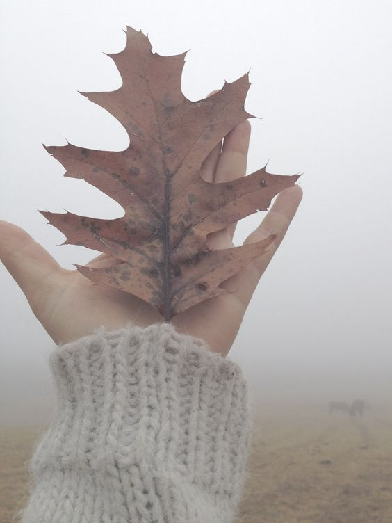 Sfruttiamo la temperatura ancora mite di settembre per svolgere qualche esercizio di ascolto corporeo o di body mindfulness, immersi nella natura all'aperto. www.susannamurray.com