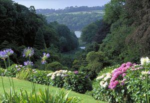Top Ten Year-round Gardens in Cornwall: Trebah