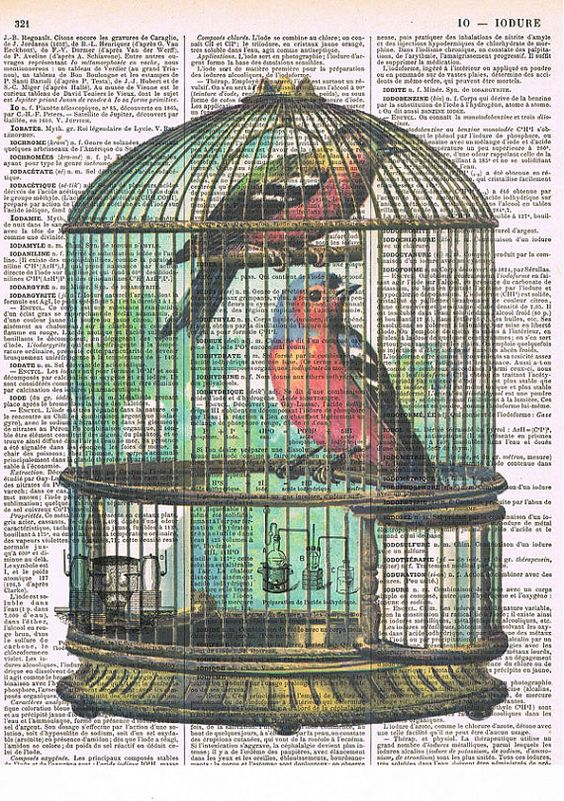 Birdcage.Bird,red blue.altered antique. book page.gift.birthday,home deco.special.repurposed.collage art.mixed media.avian.fly