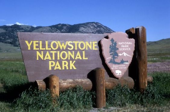 Redefining Fun and Touring with Yellowstone Vacation Packages