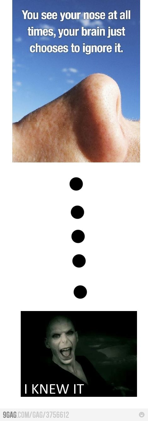 Noses Frm bd: Harry Potter Humor