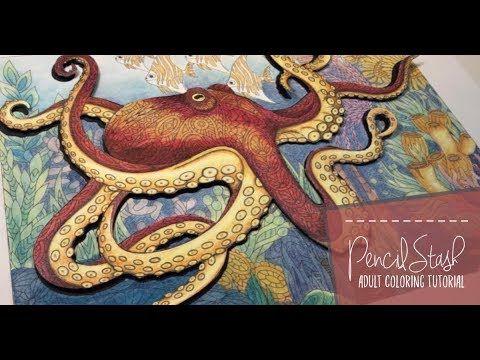 Creating A 3d Octopus With Coloring Book Cafe A Pencilstash Tutorial Youtube Coloring Books Printable Coloring Book Book Cafe