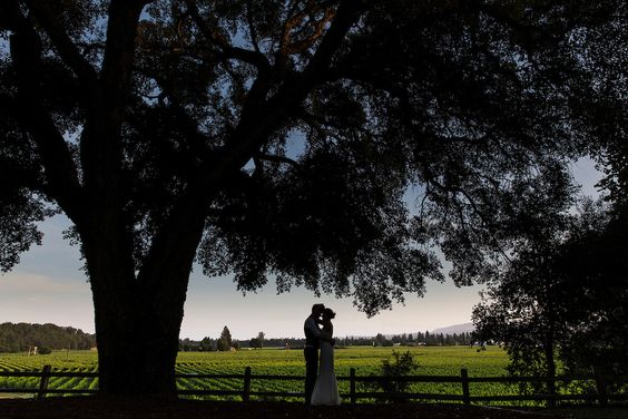 a perfect night | Healdsburg Country Gardens | Mad and Moonly Photography
