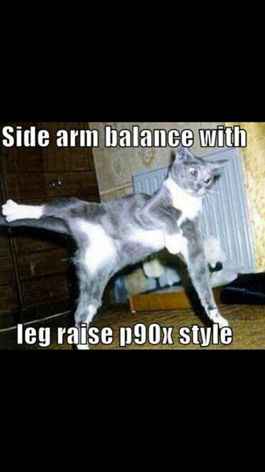 P90x cat
