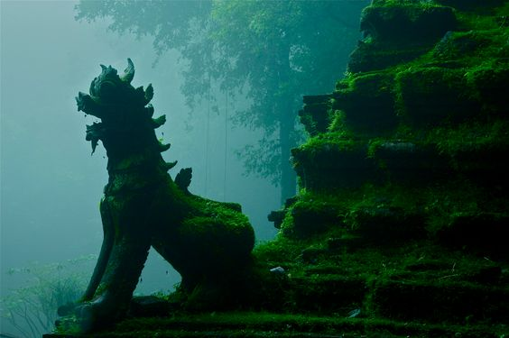Jungle ruins, Wat Umong forest temple, Chiang Mai, Thailand by John Spies