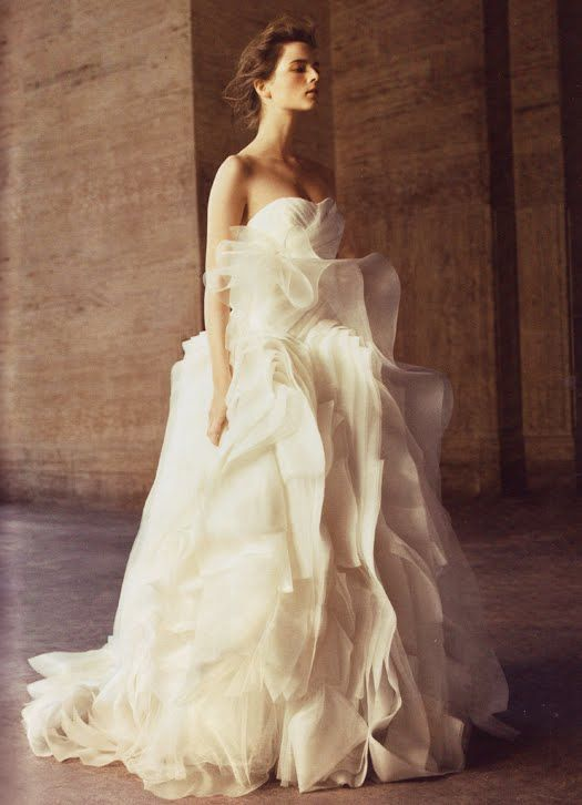 Vera wang affordable collection for david 39 s bridal 600 for Affordable vera wang wedding dresses