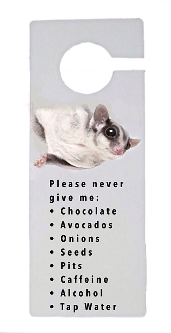 Please never give me . . .   Cage Door Sign