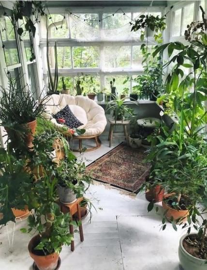 porch decorated with indoor plants #gardenIdeas #garden #gardening #plants #homeDecor #indoor