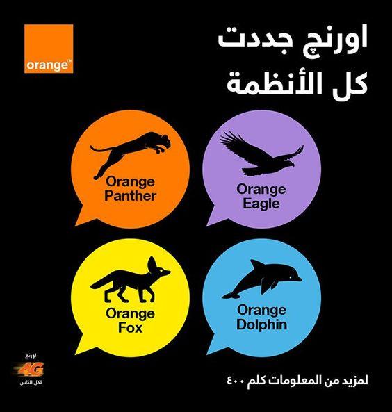 أنظمة و باقات اورنج Orange 2020 للمكالمات اليومية والشهرية وأقوي العروض 2020 Dolphins Panther Movie Posters