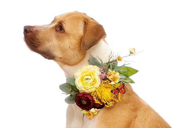 Wedding Flower Dog Collar Corsage