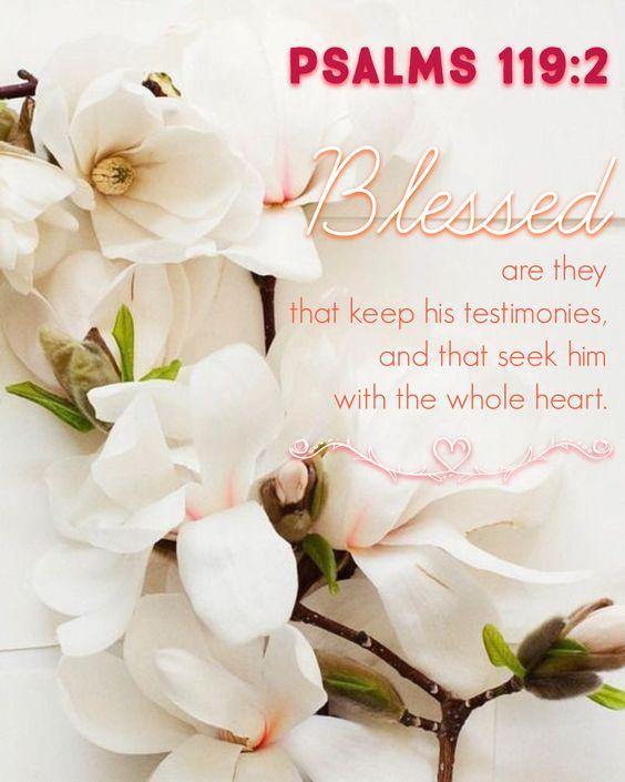 Bienaventurados los que guardan sus testimonios, y con todo es corazon le buscan.