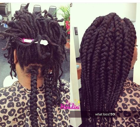 25+ Protective styles over locs inspirations