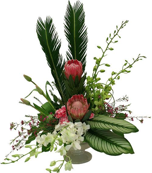 Exotic Flower Arrangements |: